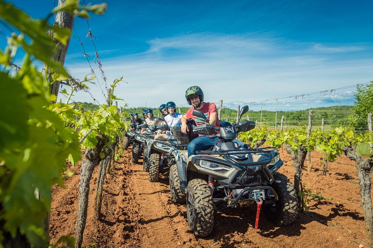 six quad vehicles in a vineyard taking a photo