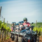 for quads and tourists in a vineyard