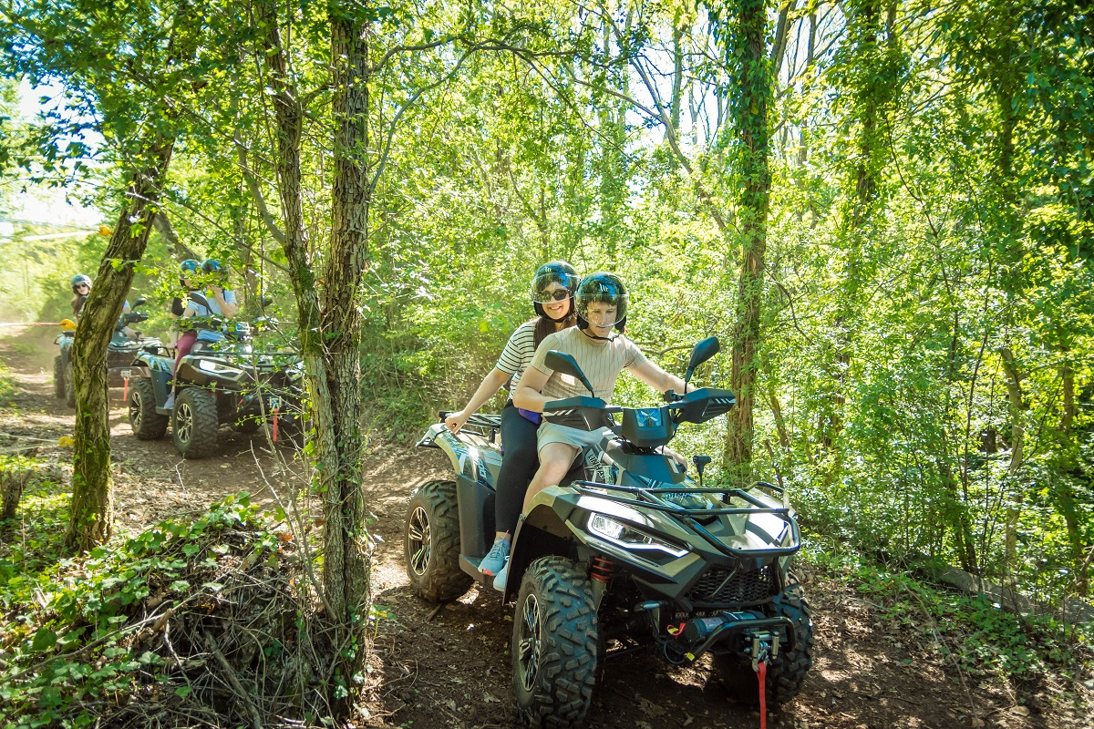 people driving atv in the forest