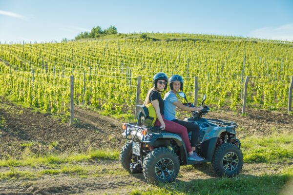 two guests on an atv vehicle and vine yard