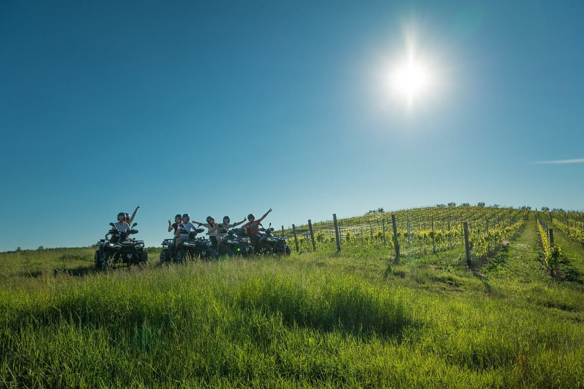 tourists on a atv vehicles in a vineyard
