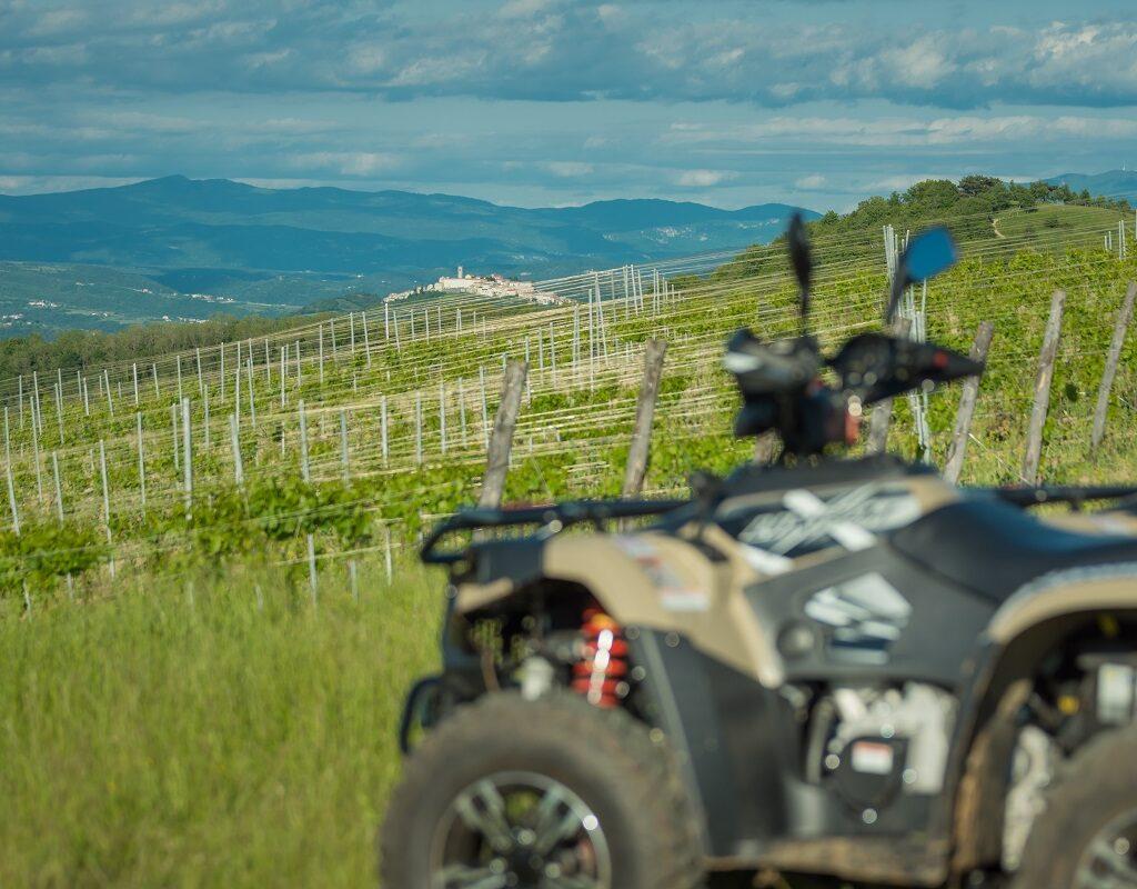 ATV Linhai 500 in vineyard of Vizinada